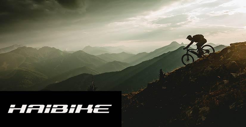 Haibike Elektrische fietsen Boekel